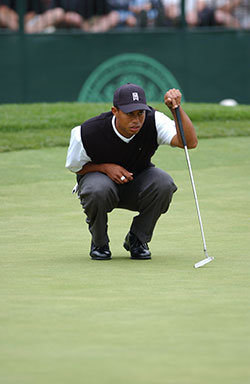 tiger-woods-small-business